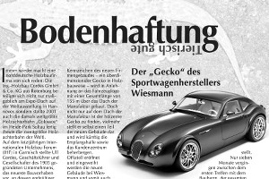Artikel Wiesmann-Gecko - Holzbaumagazin
